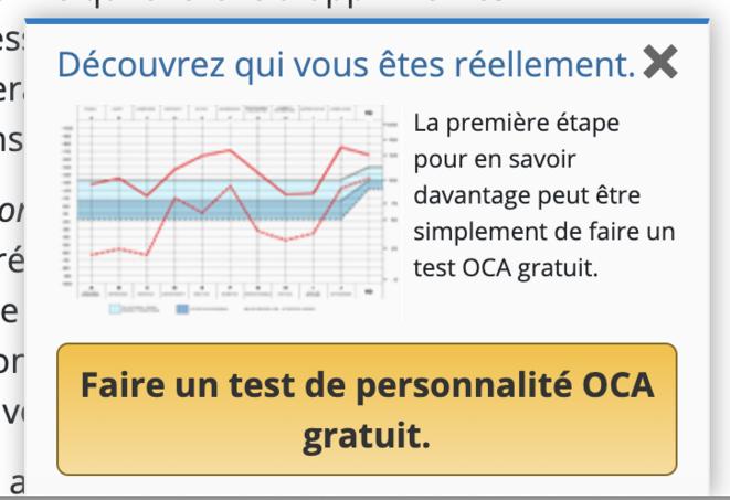 Fenêtre invitant à réaliser le pseudo-test de personnalité de la Scientologie, s'ouvrant automatiquement lors de la navigation sur un site de la Scientologie française
