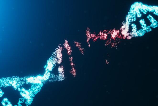 Mutation de l'ADN © Spectrum News