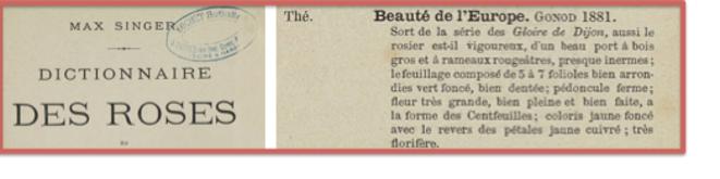 singer-titre-et-texte-pour-blog