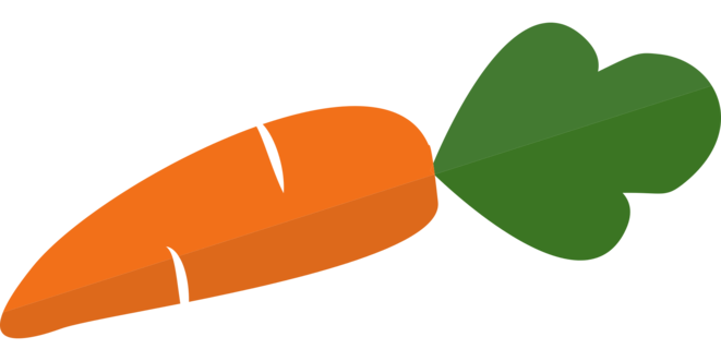 carrot-1751148