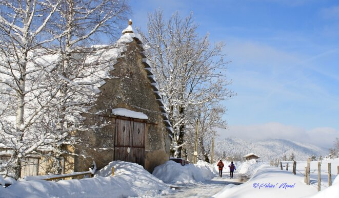 A deux, c'est mieux ! (hameau des Clots, Villard-de-Lans, Vercors) © Patrice Morel