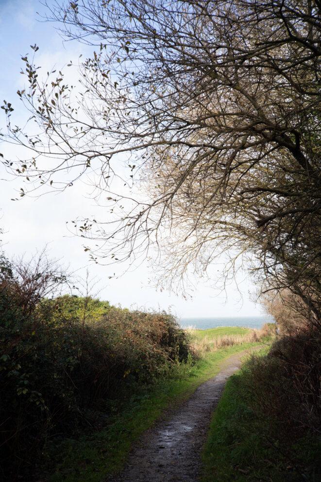 Jeffrey Silverthorne, Path to Nantois, Nantois, 2019 © Jeffrey Silverthorne