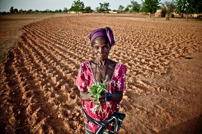 Les semences pyasnnes, un bien inestimable. © Oxfam International