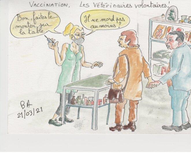 Même les vétérinaires peuvent vacciner, ils savent faire. © BA