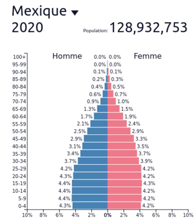 Fig.3a - Pyramide des âges au Mexique © www.populationpyramid.net/fr/monde/2020/