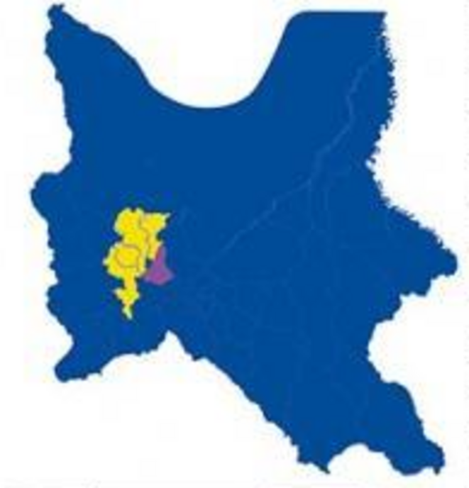 Cochabamba vote local 2021