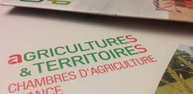 Le dernier rapport de la Cour des comptes concernant le réseau des Chambres d'agriculture, publié en mars 2021, pointe un pilotage inefficace, une organisation coûteuse, une absence de suivi des activités et appelle à une meilleure maîtrise des dépenses.