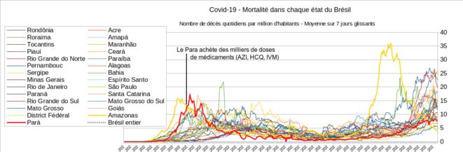 Fig.3 - Mortalité du Covid-19 au Para, en Amazonas et dans les autres états brésiliens © Enzo, Lolo, d'après les chiffres du gouvernement brésilien. Source : https://covid.saude.gov.br/