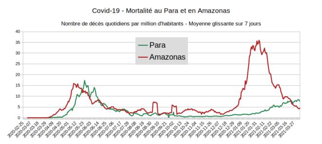 Fig.2 - Mortalité au Para et en Amazonas. © Enzo, Lolo, d'après les chiffres du gouvernement brésilien. Source : https://covid.saude.gov.br/