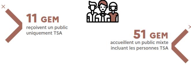 screenshot-2021-04-12-dp-bilan-autisme-3-ans-pdf-1