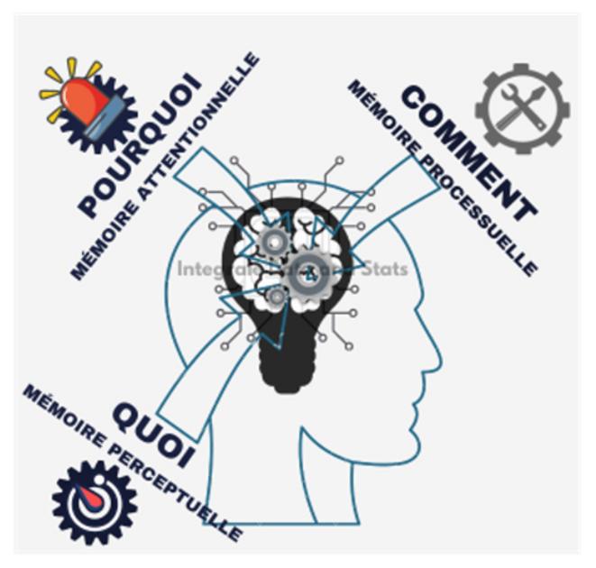 Carte mémorielle de la conscience humaine © Erno Renoncourt