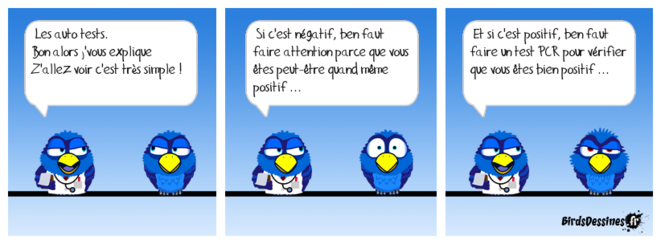 birds-covid