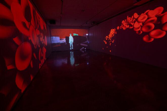 """Vue de l'exposition """"Virus becoming"""" de Shu Lea Cheang, Musée des arts asiatiques des Alpes-Maritimes, 23 janvier - 16 mai 2021 © Photo  Olivier Anrigo"""