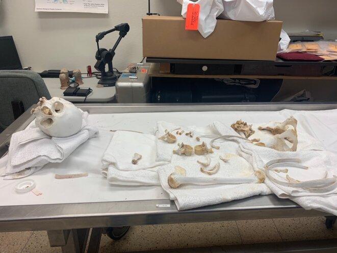 Fin avril, l'une des anthropologues judiciaires de Tucson, nettoie des ossements récemment retrouvés dans le désert, en particulier le fémur, où pourra être prélevé un échantillon d'ADN. © PN
