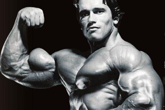 muscle-biceps