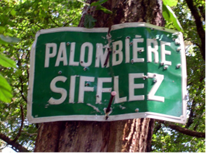 chasse-aux-palombes-1