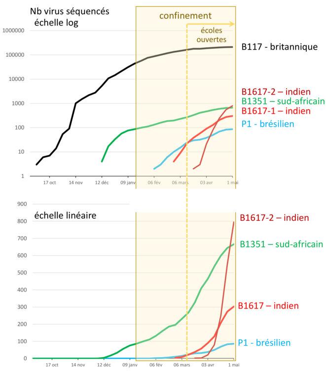 Circulation de variants au Royaume-Uni © Alan Emrey avec données du COG-UK