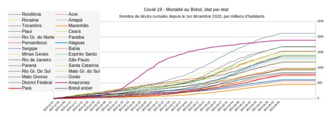 Fig.9 - Mortalité cumulée du Covid-19 au Brésil, état par état © Enzo, Lolo, d'après les chiffres du gouvernement brésilien. Source : https://covid.saude.gov.br/