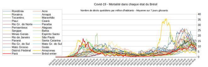 Fig.7 - Mortalité du Covid-19 au Brésil, état par état © Enzo, Lolo, d'après les chiffres du gouvernement brésilien. Source : https://covid.saude.gov.br/