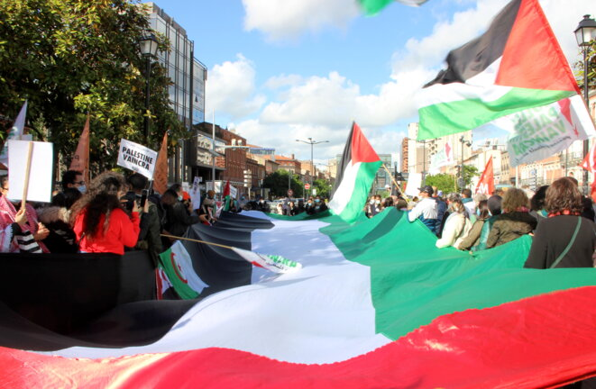 Lors de la manifestation pro-palestinienne de Toulouse, le 11 mai 2021. © ER