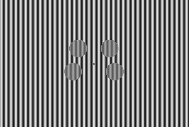 Stimulus visuel de 4 cercles avec des rayures noires et blanches.
