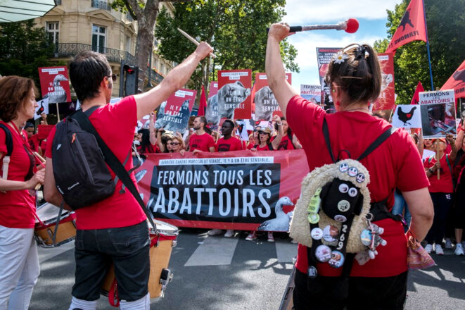 Marche pour la fermeture des abattoirs, à l'appel de L214, le 23 juin 2018 à Paris. © Séverine Carreau / Hans Lucas via AFP