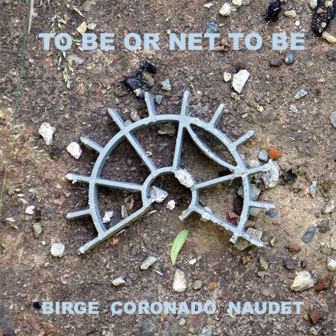 birge-coronado-naudet