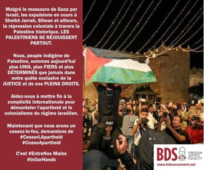Image d'information éditée par le collectif BDS.