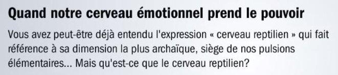 cerveau-emotionnel-reptilien-bohler