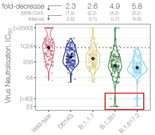 IC50 et variants © Wall et al, Lancet 2021