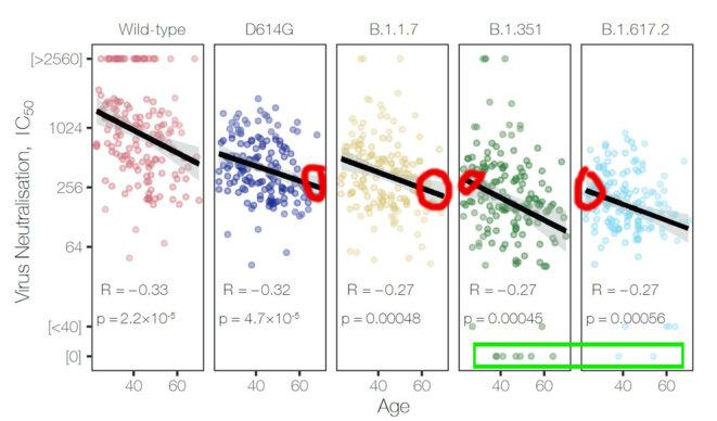 IC50, âge et variants © Wall et al, Lancet 2021