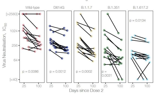 Comparasion de l'IC50 et variants, 25 et 100 jours après la 2e dose © Wall et al, Lancet 2021