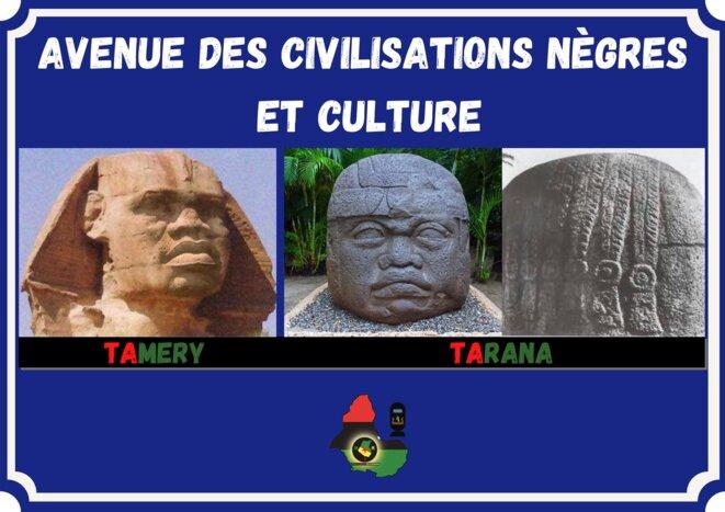 Débaptisons l'avenue Voltaire de Cayenne pour l'avenue des Civilisations Nègres et Culture