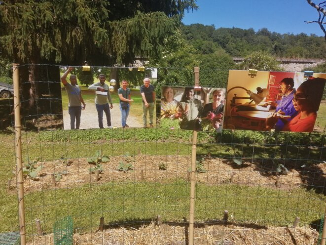 freddy-mulongo-jardin-yocontigo-4