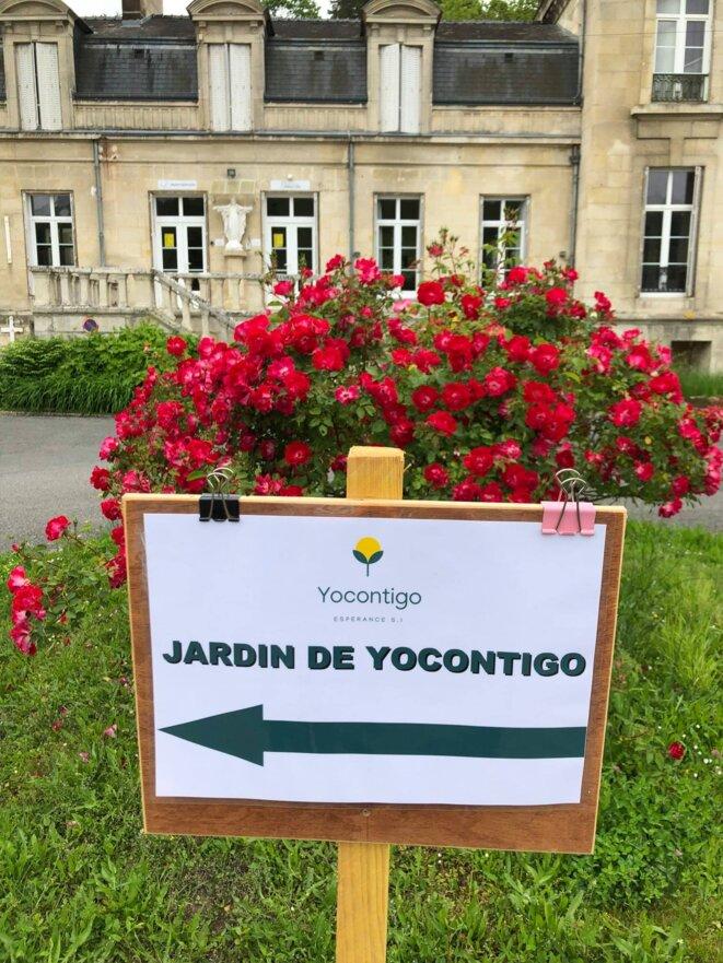 freddy-mulongo-yocontigo-jardin