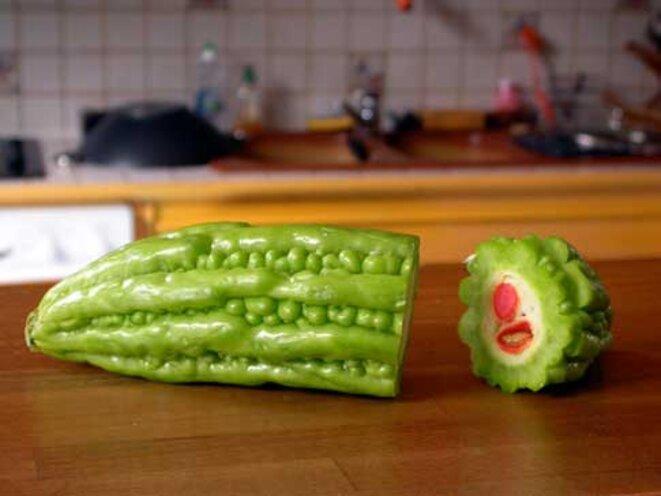 concombre-amer