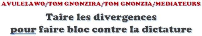 AVULELAWO/TOM GNONZIRA/TOM GNONZIA/MEDIATEURS, Togo, Taire les divergences  pour faire bloc contre la dictature