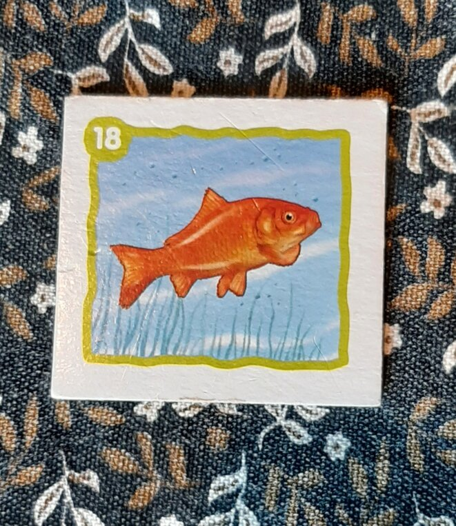 Le poisson rouge dans un jeu de memory © Ravensburger