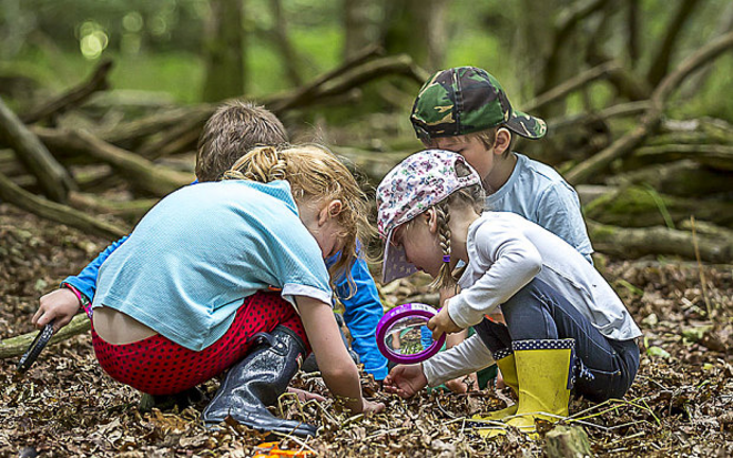 Une forest school au Danemark