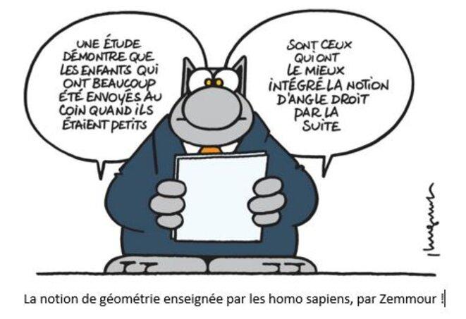 la-geometrie-presentee-par-zemmour