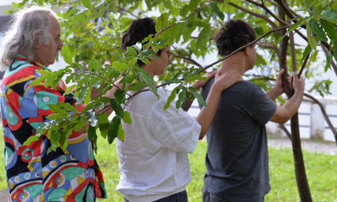Pierre Capelle fait le contact à l'arbre à Salvador de Bahia © Le Musée de l'Invisible