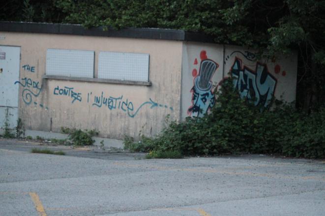 Terrain vague à Lausanne, printemps 2016. Le municipalisme ainsi que la volonté de lier la vie civique à l'entretien de l'environnement sont tout à fait compatibles avec les villes et leurs spécificités socio-écologiques, tant l'organisation des quartiers, des écosystèmes urbains que l'enjeu de l'approvisionnement en matériaux. Ce dernier point peut être un ressort de plus pour former un nouvel internationalisme à partir des politiques communales.