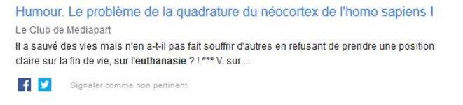 pb-quadraure-neocortex-homo-sapiens