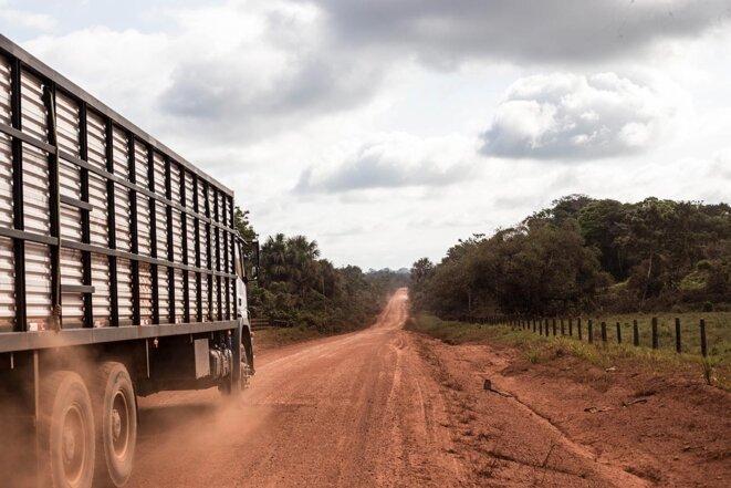 Un camion à bétail, sur la Transamazonica. © Photo Jean-Mathieu Albertini pour Mediapart