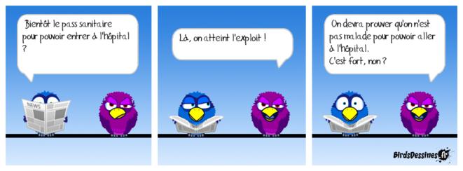 birds-pass-sanitaire-hopital