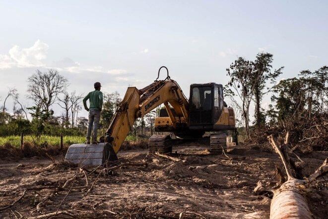 Des paysans constatent la destruction des terres au sein de la fazenda Vilhena. © Photo Jean-Mathieu Albertini pour Mediapart