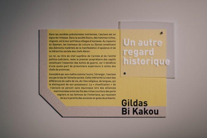 Expression(s) décoloniale(s) #2 Musée d'histoire de Nantes © David Gallard
