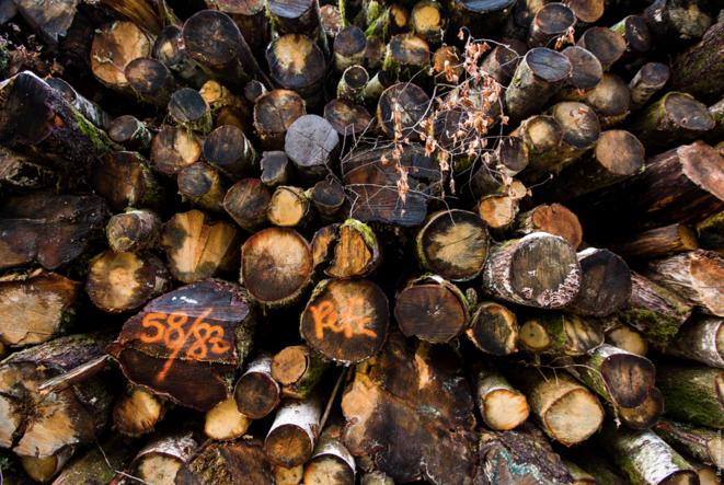 C'est la coopérative forestière Unisylva, adhérente au label PEFC, qui a réalisée cette coupe rase: l'ensemble des bois sont donc « certifiés » être issus d'une gestion durable des forêts.