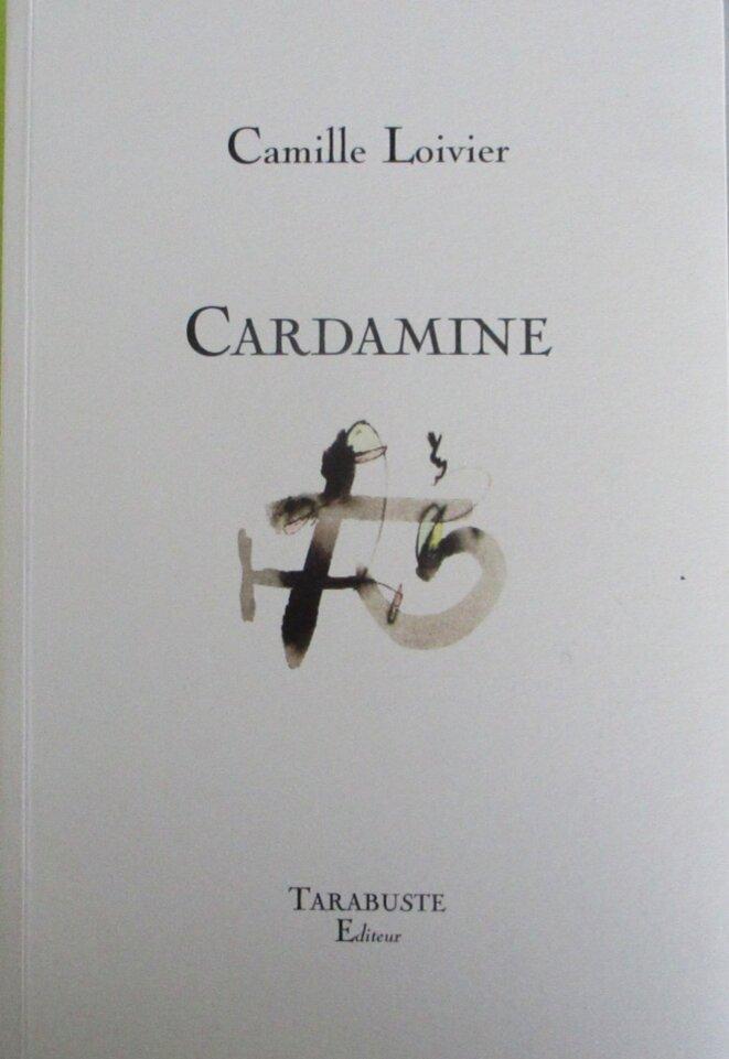 camille-loivier-cardamine