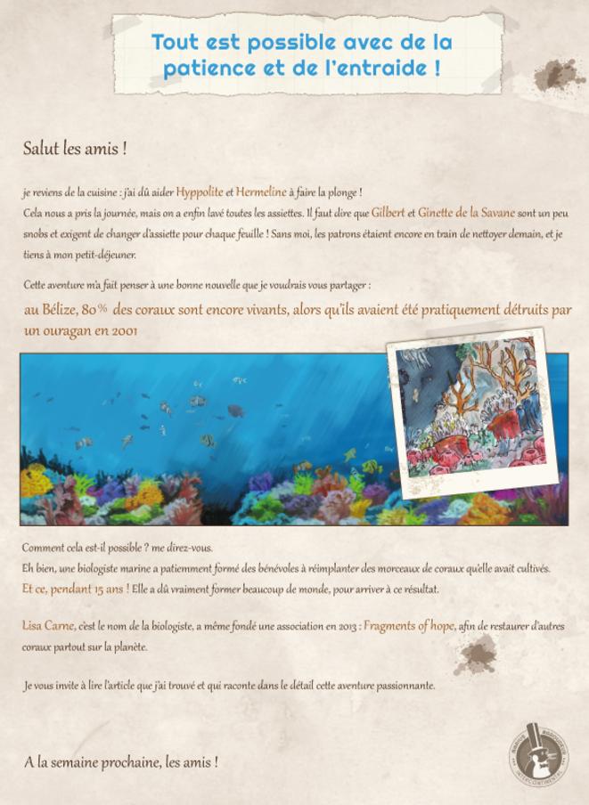 MariusMag #7 - coraux © A. Croharé - C. Goguely